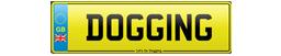 Go Dogging